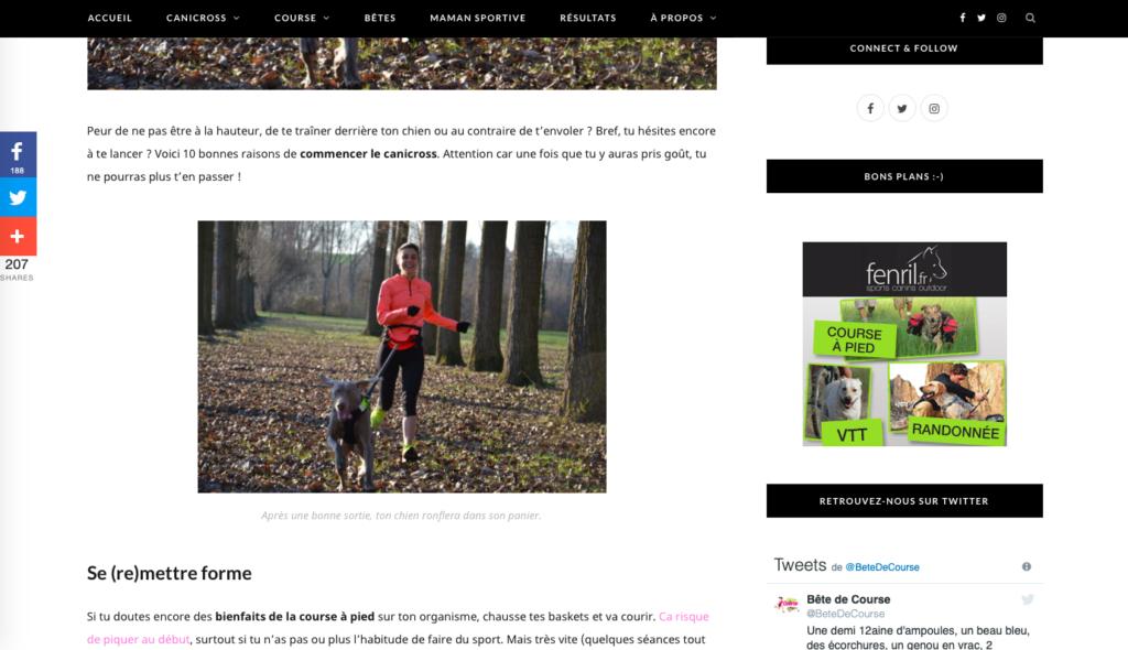 Capture article de blog