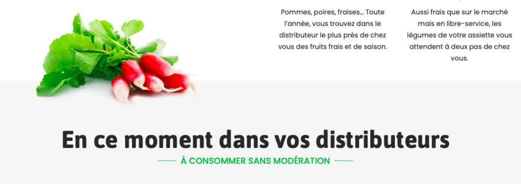 Illustration site web Des Produits D'Ici